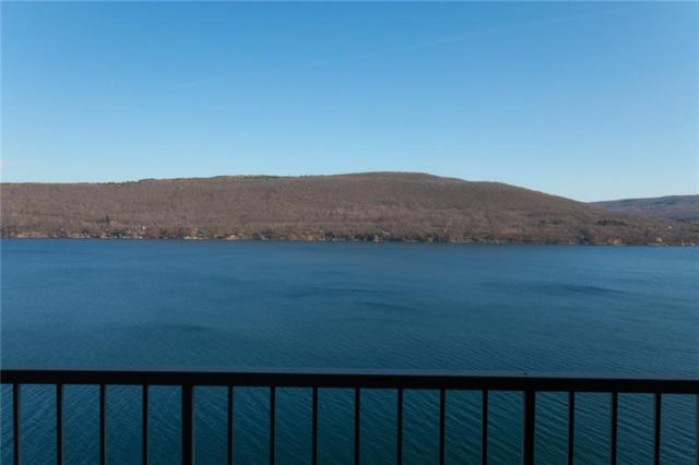 166 Cliffside Drive, South Bristol, NY 14424 (MLS #R1101398) :: The Rich McCarron Team
