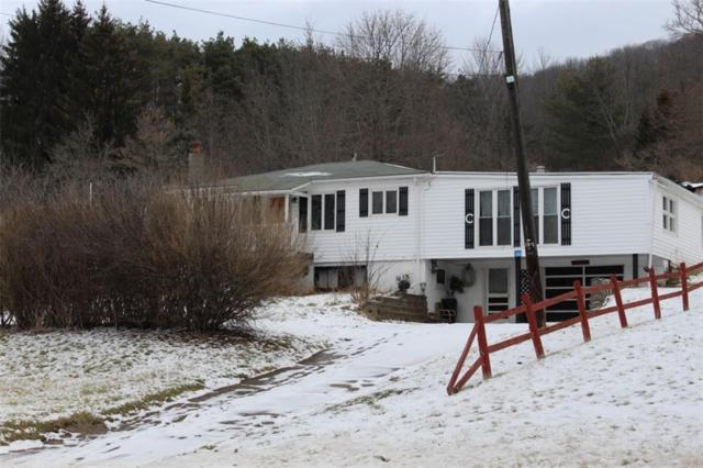 2488 State Route 19, Wellsville, NY 14895 (MLS #R1102980) :: The Chip Hodgkins Team
