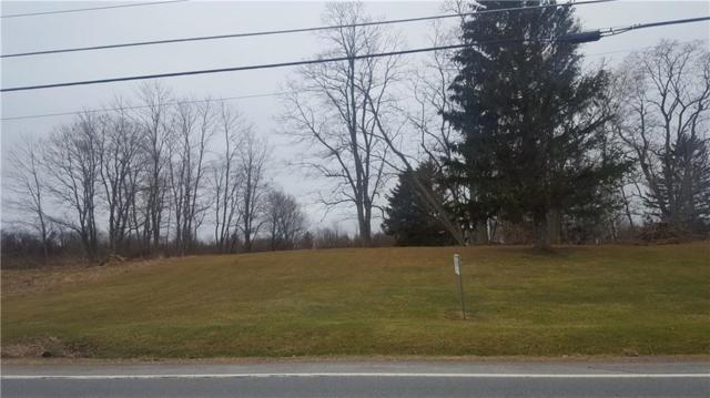 0 VL Lake Road, Williamson, NY 14589 (MLS #R1103088) :: The Rich McCarron Team