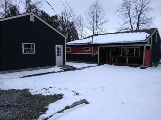 59 Blue Pond, Wheatland, NY 14546 (MLS #R1103719) :: The Rich McCarron Team
