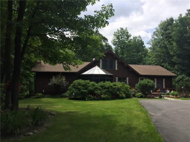 6583 Woodland Trail, Bristol, NY 14424 (MLS #R1104868) :: The Chip Hodgkins Team