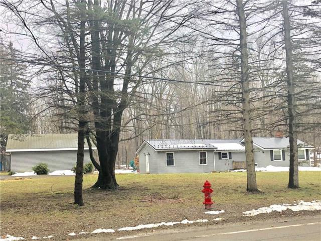 8662 Ellicott Road, Portland, NY 14716 (MLS #R1107251) :: Updegraff Group