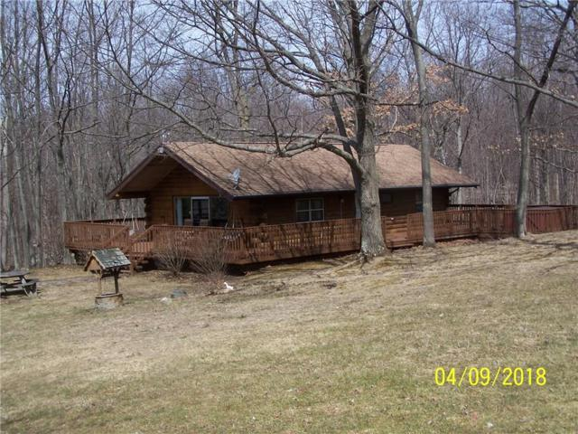 1655 Thomas Road, Potter, NY 14544 (MLS #R1108286) :: Updegraff Group
