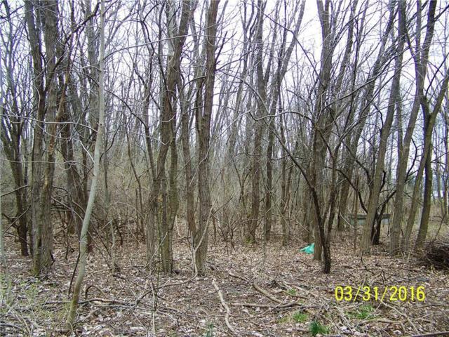 5876 East Lake Way  Lot 45 Way, Romulus, NY 14541 (MLS #R1109070) :: Updegraff Group
