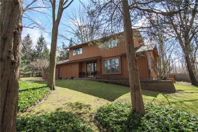 61 Drumlin View Drive, Mendon, NY 14506 (MLS #R1109075) :: Robert PiazzaPalotto Sold Team