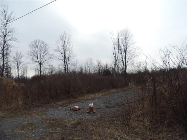 0 Clarkson Parma Tnl Road, Clarkson, NY 14420 (MLS #R1109220) :: Robert PiazzaPalotto Sold Team