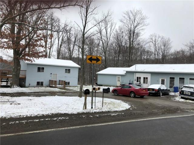 5914 County Route 64, Hornellsville, NY 14843 (MLS #R1110698) :: Robert PiazzaPalotto Sold Team