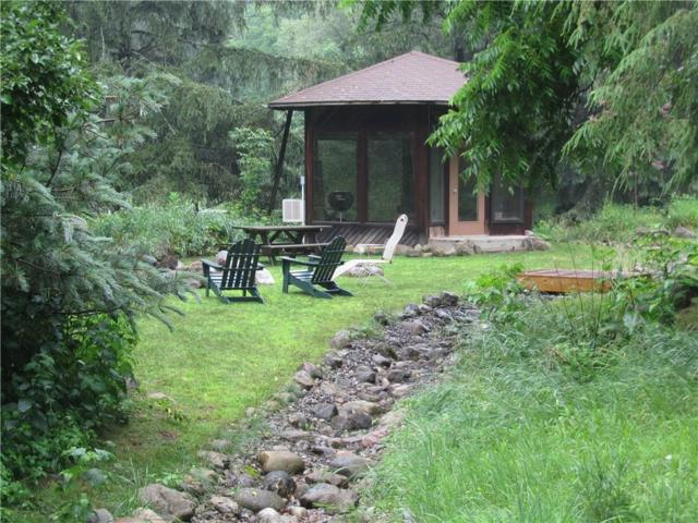 1520 Cranberry Pond Trail, Victor, NY 14564 (MLS #R1111778) :: Robert PiazzaPalotto Sold Team