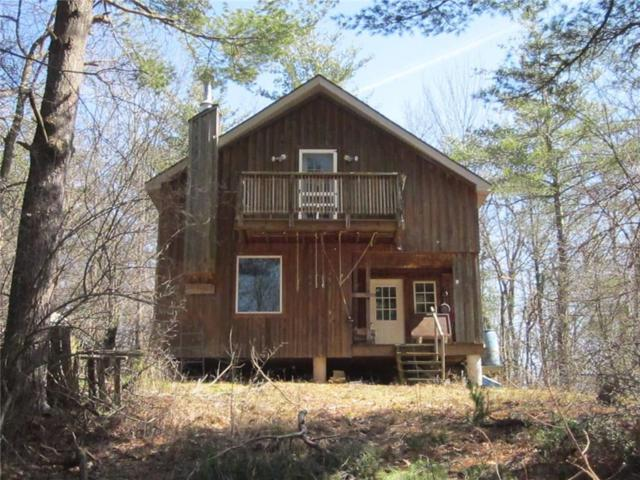517 Geiger Road, Dansville, NY 14437 (MLS #R1112126) :: The Rich McCarron Team