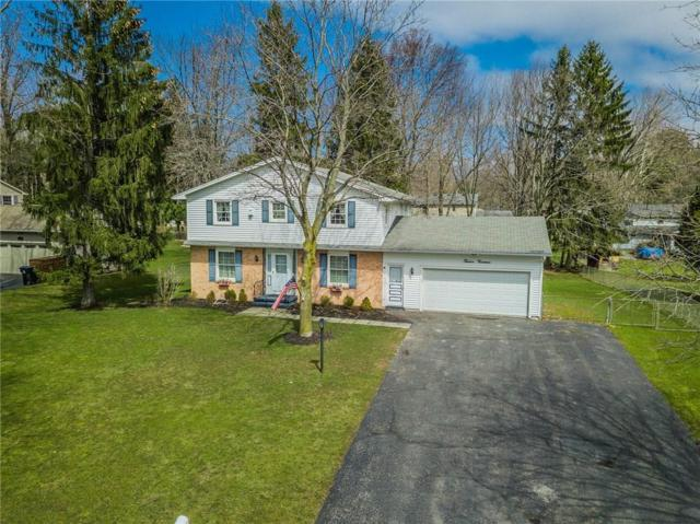 1214 Majestic Ns, Webster, NY 14580 (MLS #R1112313) :: The Rich McCarron Team