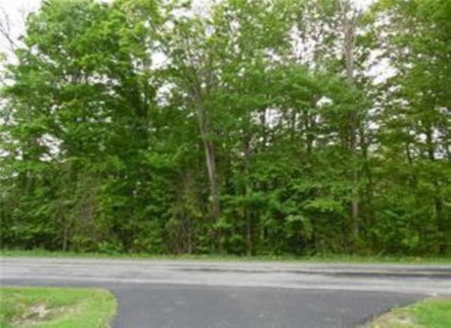 0 Westman Road, Ellery, NY 14712 (MLS #R1112753) :: Updegraff Group
