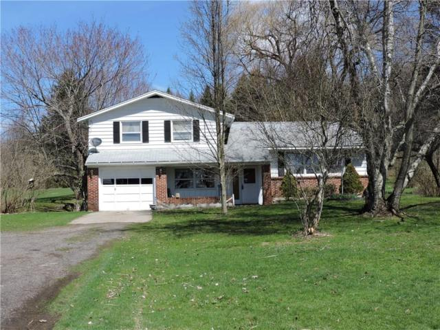 1527 Peck Settlement Road, Kiantone, NY 14701 (MLS #R1113090) :: The CJ Lore Team   RE/MAX Hometown Choice