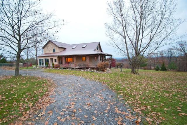 5231 Purcell Road, Richmond, NY 14466 (MLS #R1113558) :: Updegraff Group