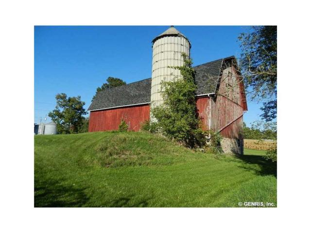 343 Armstrong Road, Wheatland, NY 14546 (MLS #R1114130) :: Updegraff Group