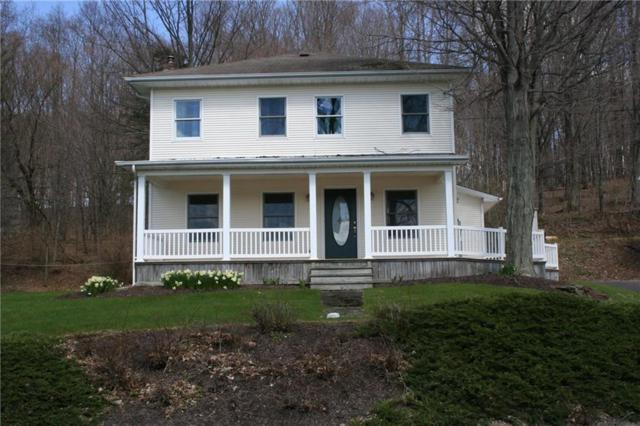 2706 Sunnyside Road, Mina, NY 14736 (MLS #R1114465) :: Robert PiazzaPalotto Sold Team
