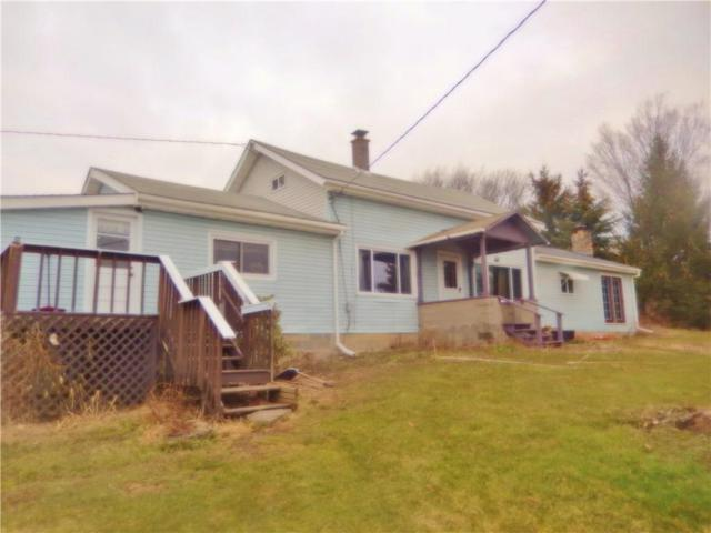 11961 County Route 122, Prattsburgh, NY 14873 (MLS #R1115391) :: Robert PiazzaPalotto Sold Team