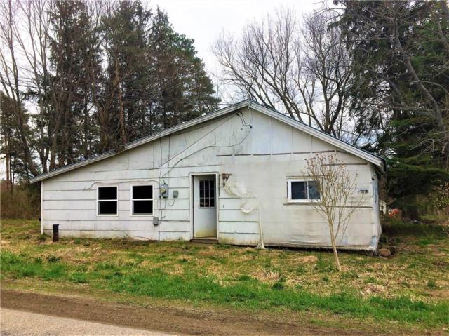 3661 High Street, Stockton, NY 14718 (MLS #R1115424) :: The Chip Hodgkins Team