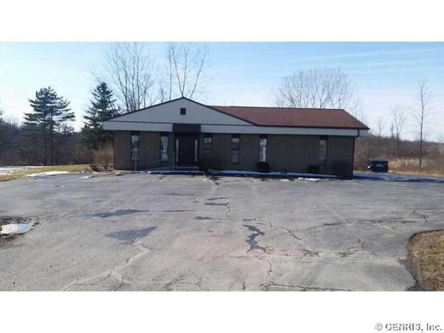 2374 Route 414, Seneca Falls, NY 13148 (MLS #R1116670) :: Updegraff Group