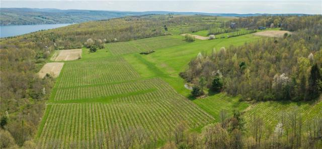 4873 Skyline Drive, Jerusalem, NY 14478 (MLS #R1118196) :: Updegraff Group