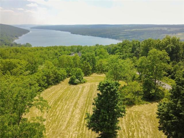 0 Esperanza Road Lot #5, Jerusalem, NY 14478 (MLS #R1118671) :: Updegraff Group