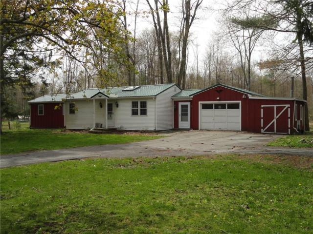 2176 Townline Road, Phelps, NY 14456 (MLS #R1119424) :: The Rich McCarron Team
