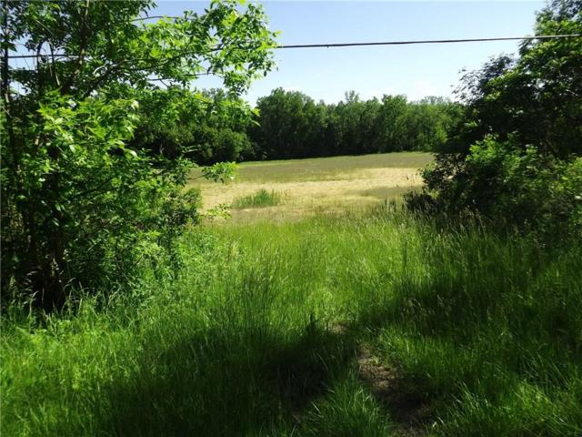 856 State Route 441, Walworth, NY 14568 (MLS #R1119903) :: Updegraff Group