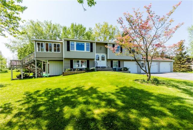 36 State Rt 88 S, Arcadia, NY 14513 (MLS #R1120242) :: Updegraff Group