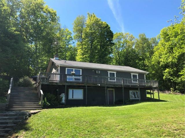 3454 Himrod Road Road, Milo, NY 14842 (MLS #R1120384) :: The CJ Lore Team | RE/MAX Hometown Choice