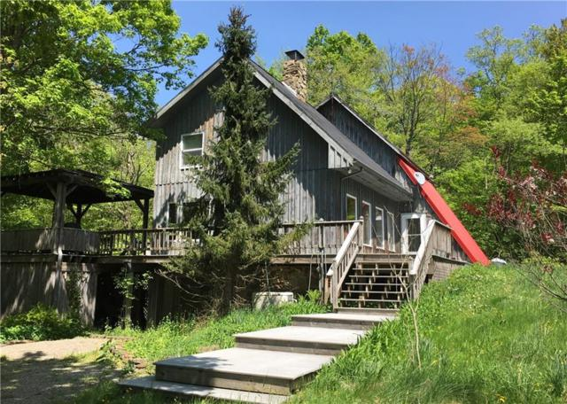 6070 Mchenry Valley Road, Alfred, NY 14804 (MLS #R1120432) :: The CJ Lore Team | RE/MAX Hometown Choice