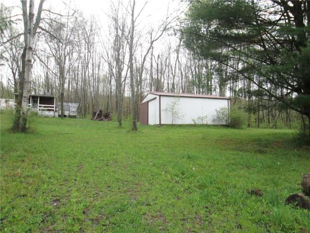 3335 Co Rd 34 West Notch Road, Wirt, NY 14774 (MLS #R1120780) :: Thousand Islands Realty