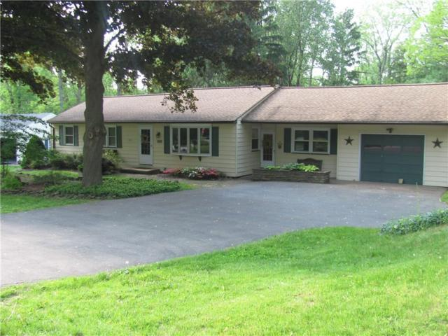 1178 Wall Road, Webster, NY 14580 (MLS #R1121486) :: The Rich McCarron Team