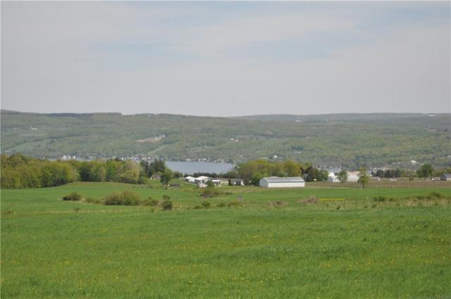 8739 Gallagher Road, Pulteney, NY 14840 (MLS #R1121732) :: The CJ Lore Team | RE/MAX Hometown Choice