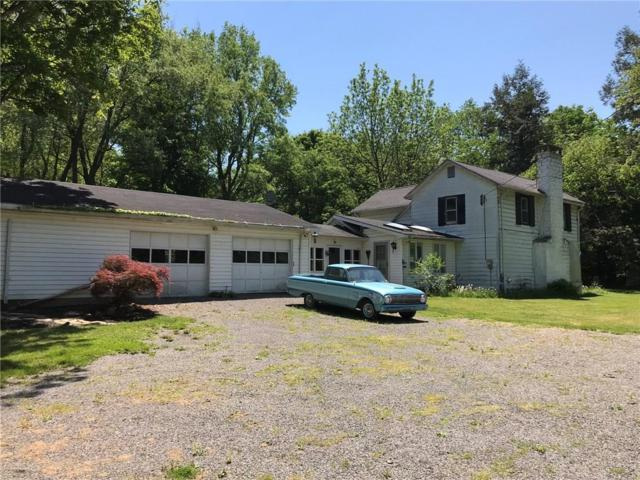 Lake Road W Lake Road, Westfield, NY 14787 (MLS #R1122241) :: The Rich McCarron Team