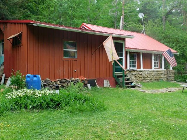 61 W Lane Road, South Valley, NY 14783 (MLS #R1122679) :: The Rich McCarron Team