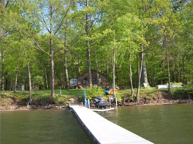 9125 Lake View Drive, Huron, NY 14590 (MLS #R1122980) :: Robert PiazzaPalotto Sold Team