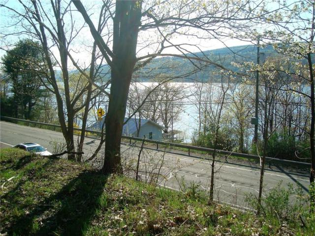 0 State Route 54, Urbana, NY 14840 (MLS #R1123405) :: The CJ Lore Team | RE/MAX Hometown Choice