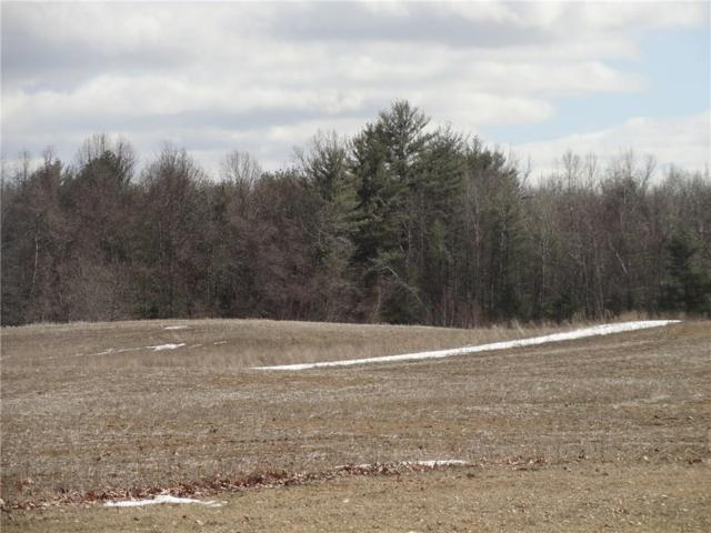 0 State Route 96, Lot #2, Waterloo, NY 13165 (MLS #R1123911) :: The Chip Hodgkins Team