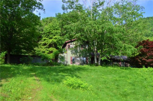 6952 S Old West Lake Road S, Canadice, NY 14471 (MLS #R1124382) :: The CJ Lore Team | RE/MAX Hometown Choice