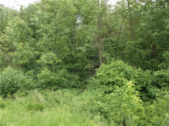 0 Route 89, Seneca Falls, NY 13148 (MLS #R1124450) :: Robert PiazzaPalotto Sold Team