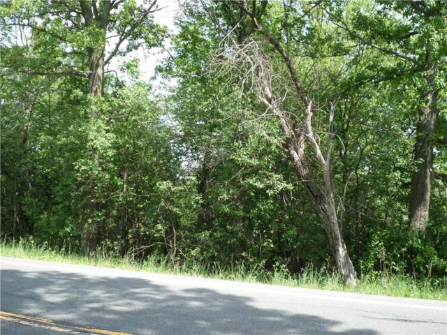 4088 State Route 226, Tyrone, NY 14837 (MLS #R1124647) :: The Rich McCarron Team