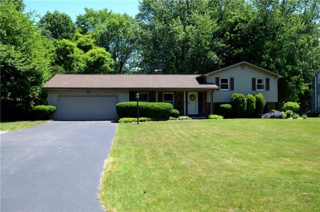 36 Henderson Drive, Penfield, NY 14526 (MLS #R1125537) :: Updegraff Group