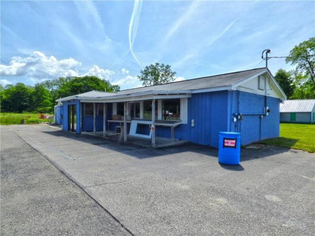 4850 Route 430, Ellery, NY 14712 (MLS #R1126059) :: Robert PiazzaPalotto Sold Team