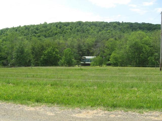 7417 Velie Road, Urbana, NY 14840 (MLS #R1126129) :: The CJ Lore Team | RE/MAX Hometown Choice