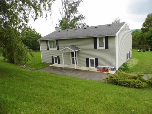 6118 State Route 15A, Canadice, NY 14560 (MLS #R1126291) :: The Rich McCarron Team