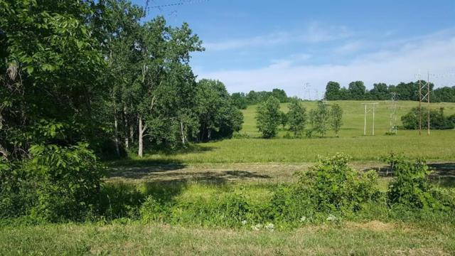 000 Lasher Road, Mentz, NY 13140 (MLS #R1126756) :: The CJ Lore Team | RE/MAX Hometown Choice