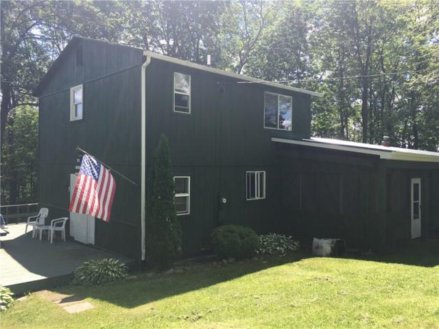 134 Fitzstephens Road, Willing, NY 14895 (MLS #R1126895) :: The CJ Lore Team | RE/MAX Hometown Choice