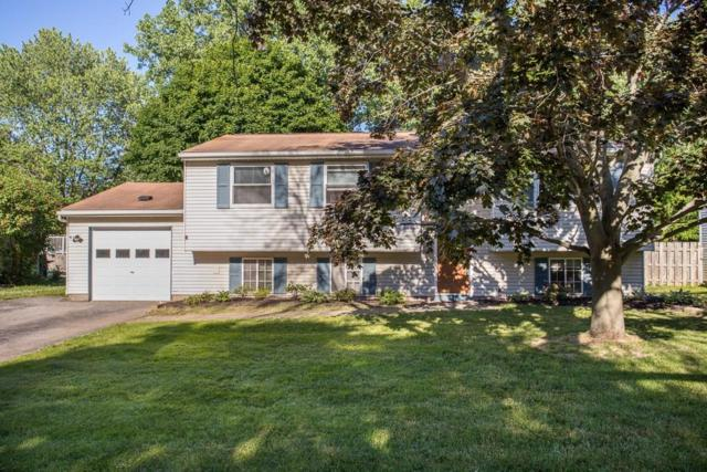 107 Snowberry Crescent, Gates, NY 14606 (MLS #R1126899) :: Robert PiazzaPalotto Sold Team