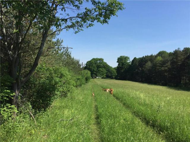 786 Green Road, Alfred, NY 14803 (MLS #R1126959) :: The CJ Lore Team | RE/MAX Hometown Choice