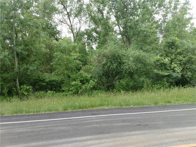 49 Ogden Center Road, Ogden, NY 14559 (MLS #R1127121) :: Robert PiazzaPalotto Sold Team