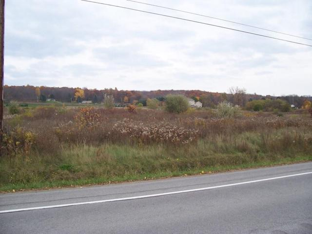 0 Sthwy 256, Sparta, NY 14437 (MLS #R1127210) :: The Chip Hodgkins Team
